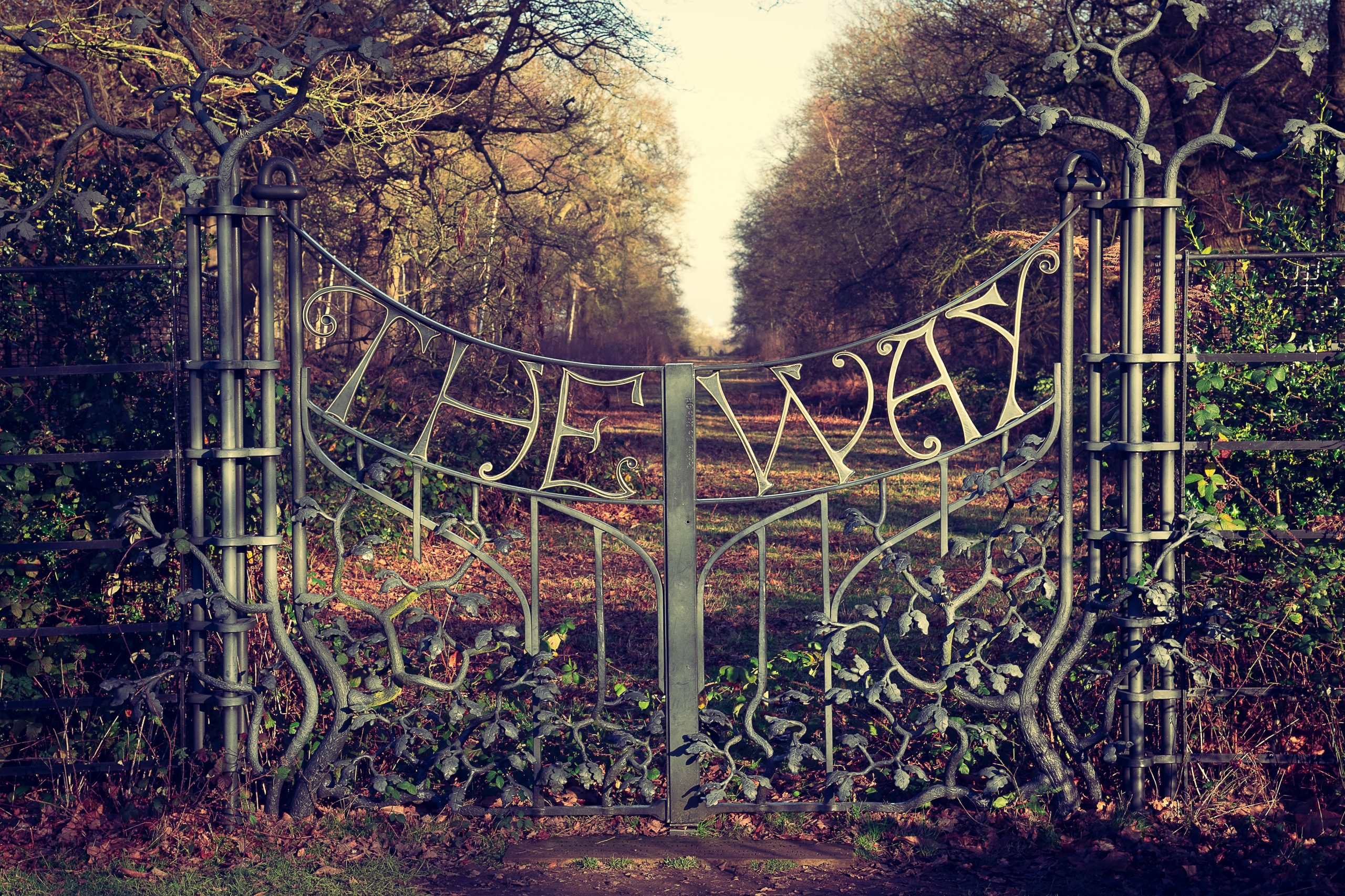 """Iron Gate with the words """"The Way"""""""